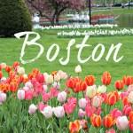 Enjoying Springtime in Boston