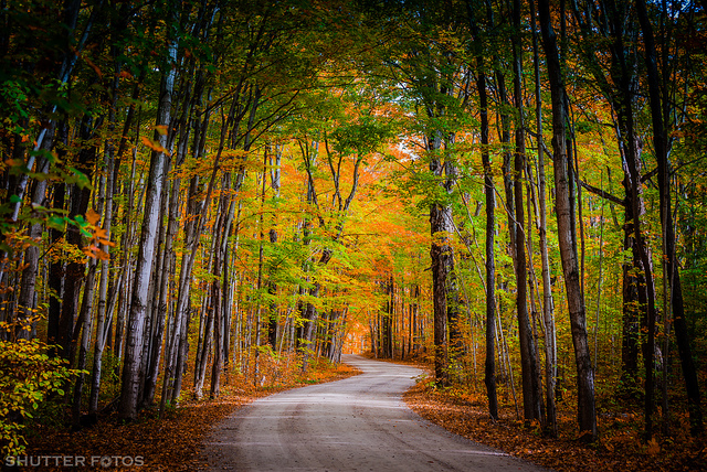 Fall Tunnel from just outside Sauble Beach, Ontario, Canada by Shutter Fotos on Flickr.