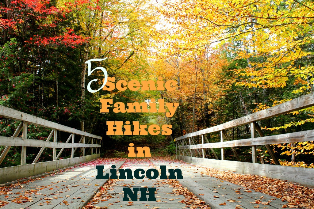 5 Scenic Family Hikes Around Lincoln New Hampshire The