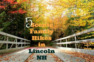 5 Scenic Family Hikes Around Lincoln New Hampshire