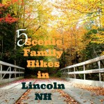 5 Scenic Family Hikes Around Lincoln New Hampshire