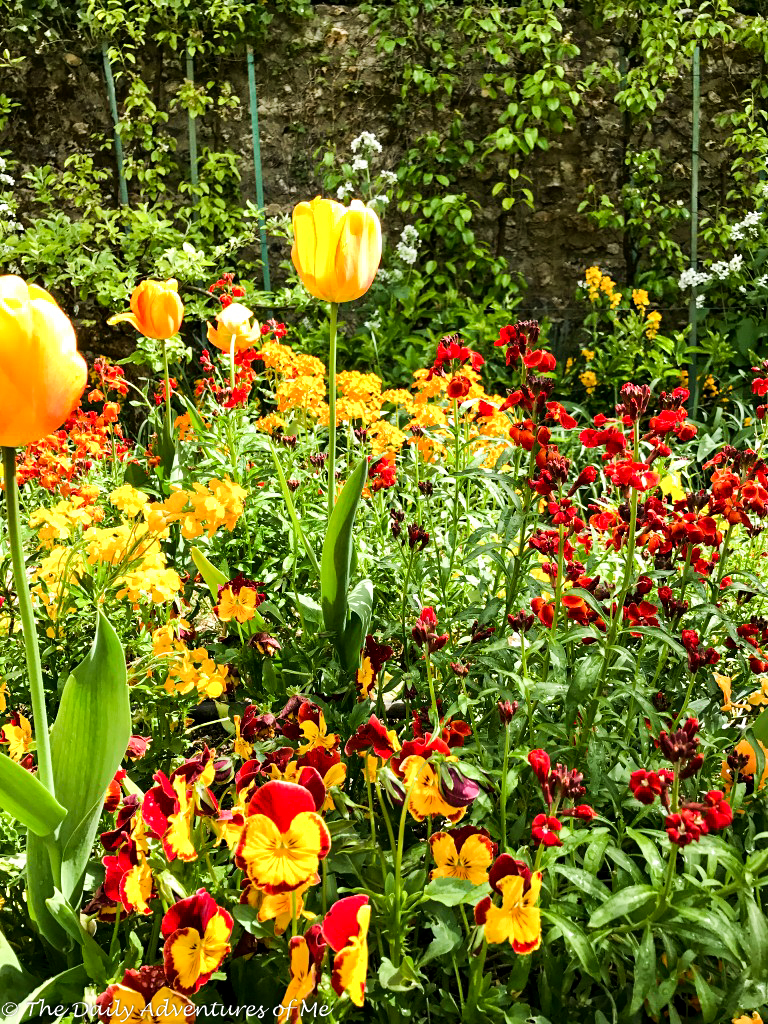 The Giverny gardens in spring. thedailyadventuresofme.