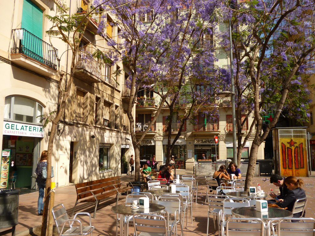 Barcelona is one of the most popular places to visit in Spain,