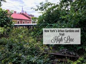 New York's High Line. thedailyadventuresofme.com