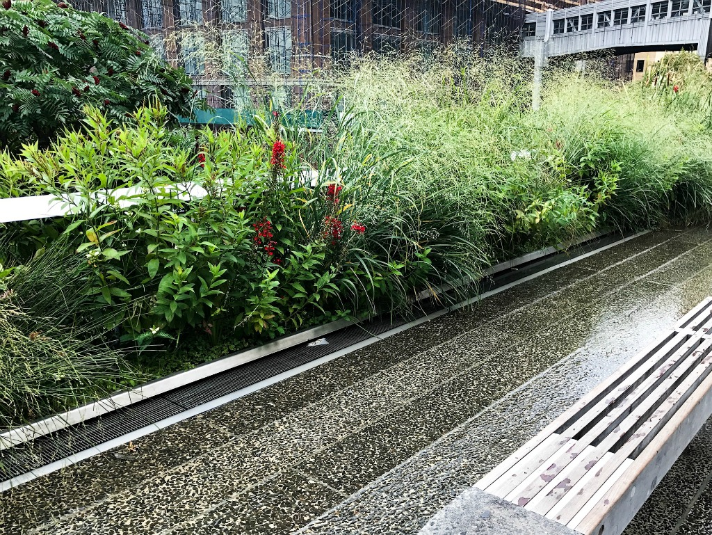 fountain at High Line. thedailyadventuresofme.com