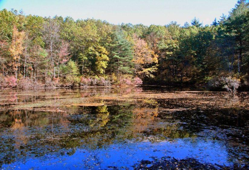 New England nature bucket list
