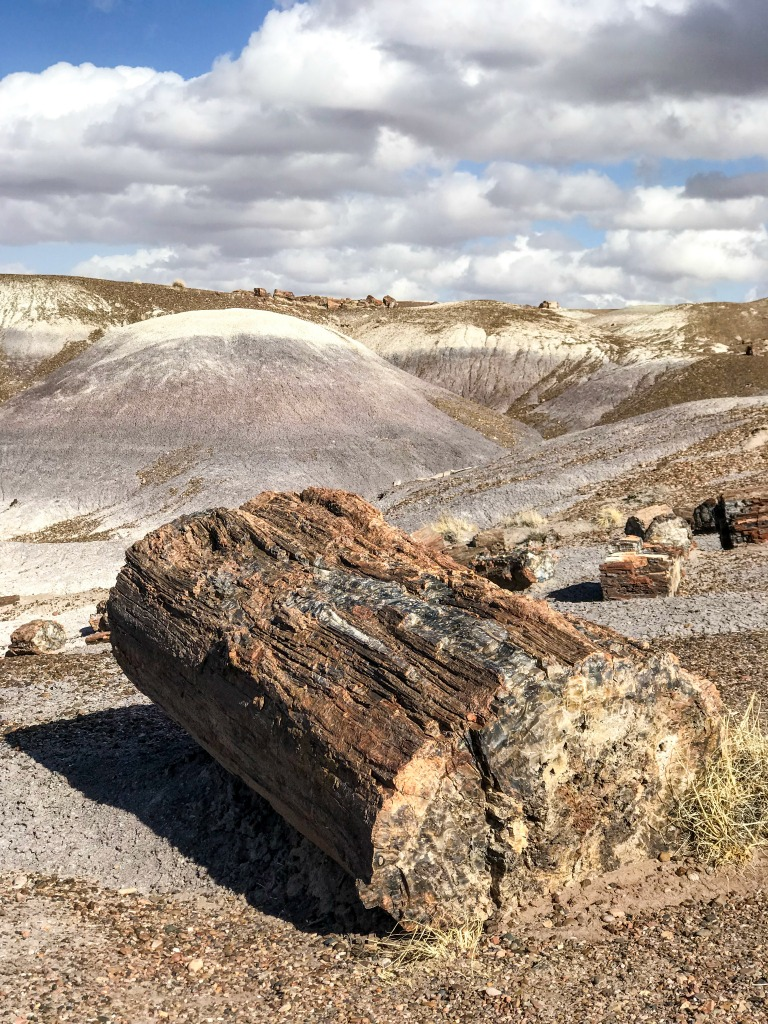 The Painted Desert and Petrified Forest National parks in #Arizona #USA are the perfect addition to a road trip of the southwest US. Read on to see why.