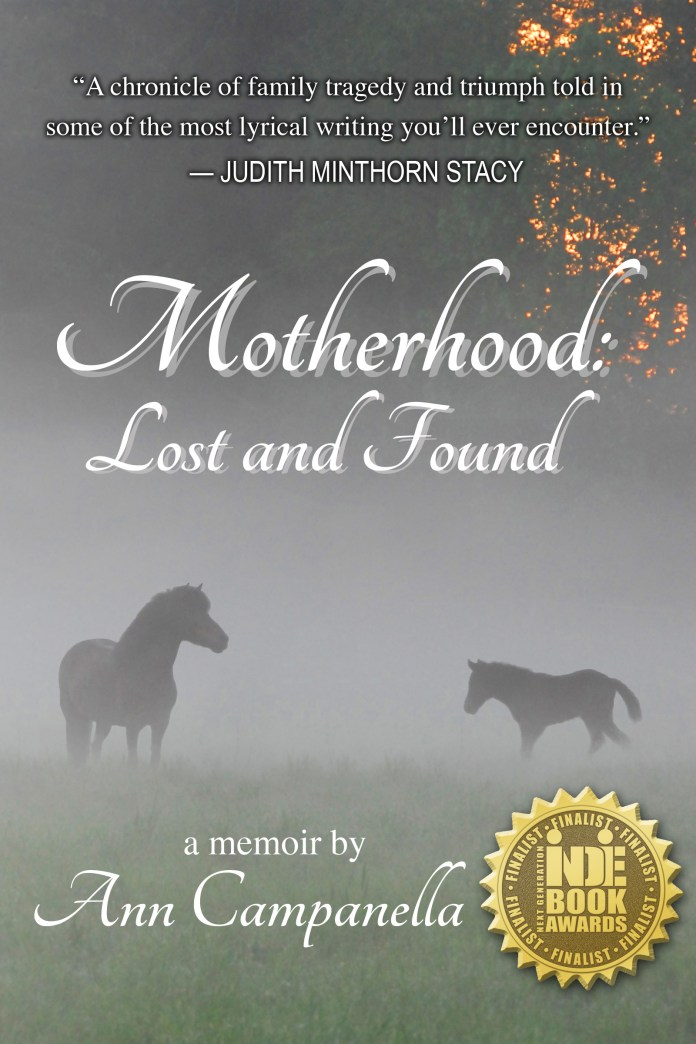 Motherhood: Lost and Found(Book Cover)