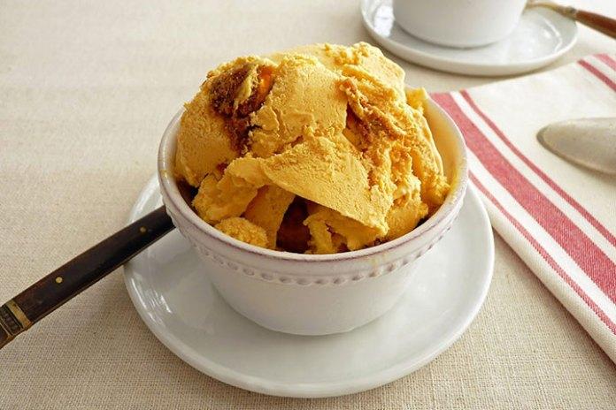Pumpkin cream cheese ice cream