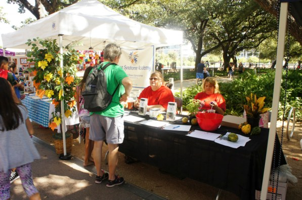 Discovery Green hosted Volunteer Fest on Sunday. | Valli Challa/ The Cougar