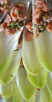 belgian endive hors d'oeuvres