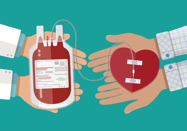 Does Blood Donation Break Any Precept?