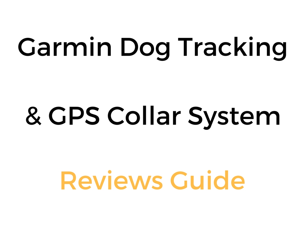Garmin Dog Tracking Amp Gps Collar System Reviews Guide