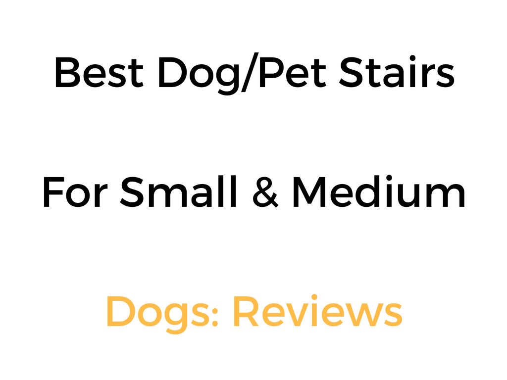 Best Pet Stairs Amp Steps For Small Dogs Amp Medium Dogs