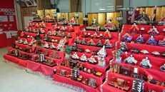 As it came about, a very large collection of Hina doll's was exhibited at the shrine.
