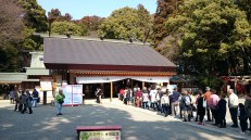 The main building of Tokiwa Jinja. There is a line of people who are waiting to pray. Usually this is only the case on major celebrations. As Kairakuen is currently quite crowded, people also come to the close by shrine.