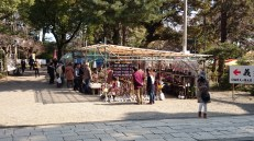 Currently there is a booth selling various kinds of Ume bonsai trees. It is one of the local export goods.