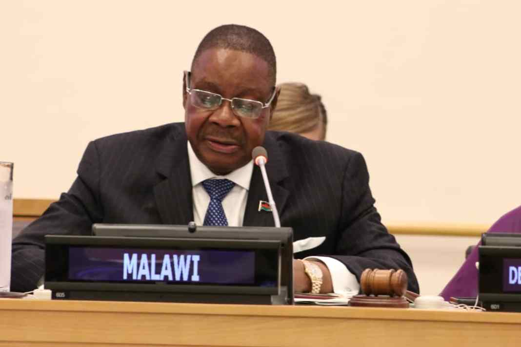 Malawian President, Murtharika Appeals Court Judgment Nullifying His Election 3
