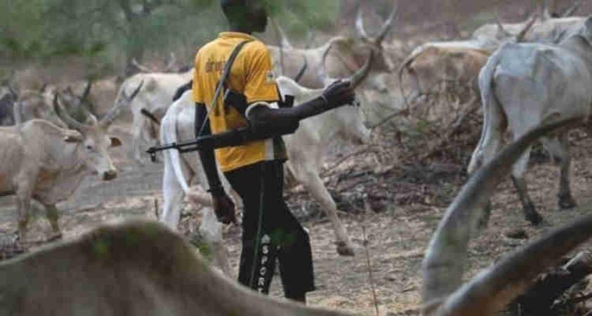 35 killed in herdsmen-farmers clashes 3