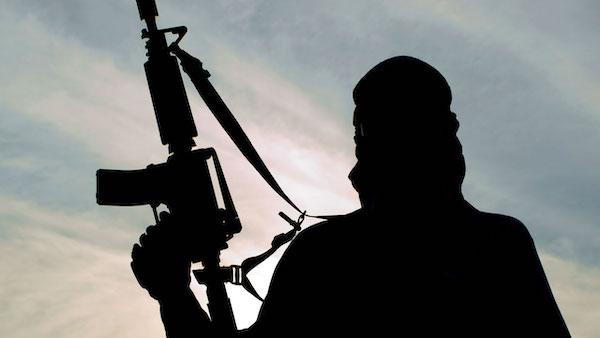 Gunmen kill 17, raze houses in Benue 3