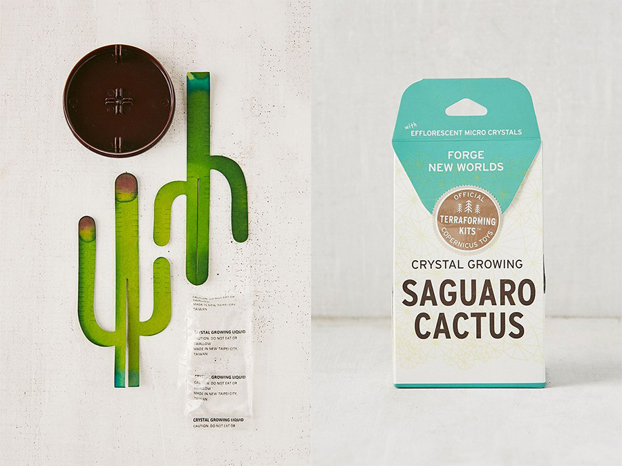 crystal saguaro cactus