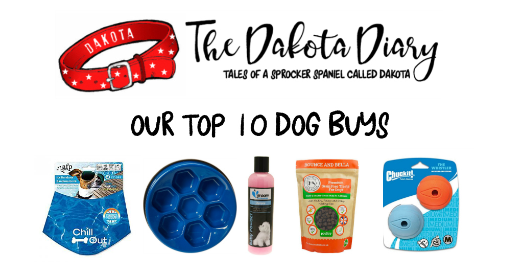 Our top 10 dog buys