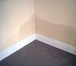 damp proofing internal walls