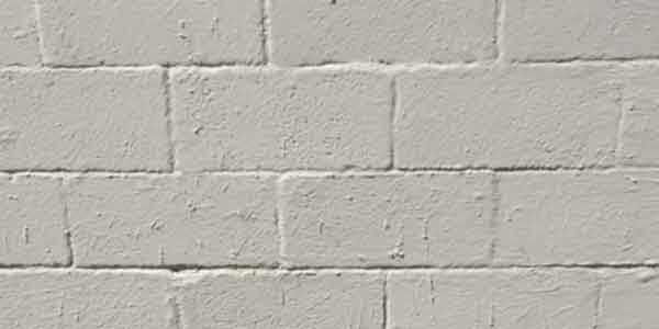 can you paint a damp exterior wall