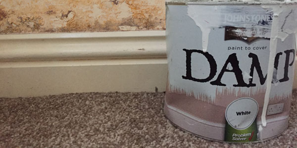 can you paint over rising damp
