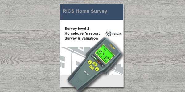 will a homebuyers survey pick up damp