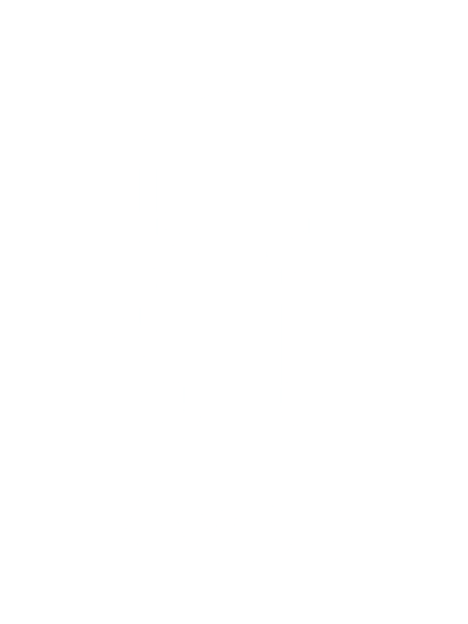 Ayoo Logo Final (Trasparent)