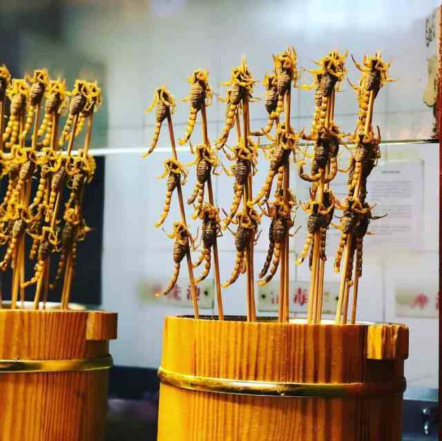 live scorpians on sale at a market in china