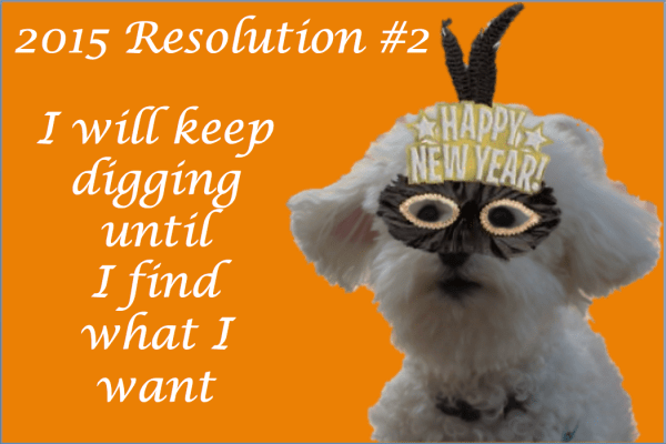 New Year's Resolution #2 | The Dante Diaries
