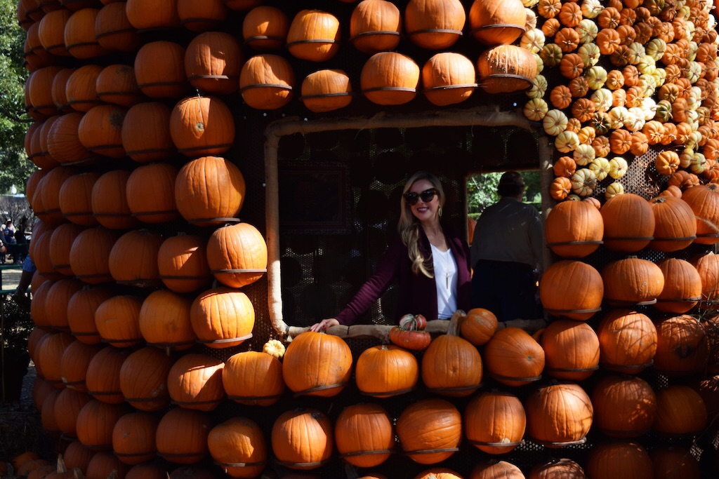 Pumpkin Village | Dallas | Arboretum