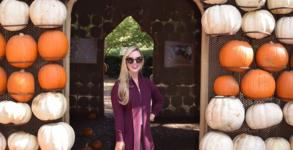 Fall Fashion | Pumpkin Village | Cardigan
