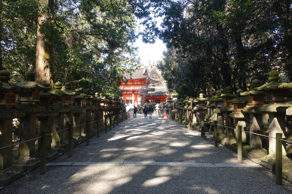 magical day trip to Nara, Japan - @thedashanddine