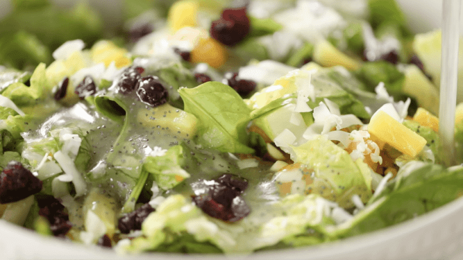 Citrus and cranberry salad sits with freshly poured poppy seed dressing on it.