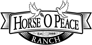 Horse O Peace Ranch Handmade Goat Milk Soaps at The Days of Gifts