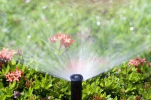 shutterstock_109467083- sprinkler