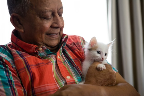 Happy senior man playing with kitten at nursing home