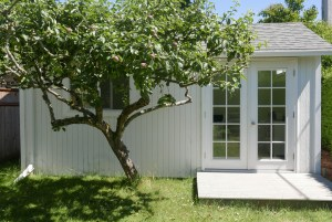 A tiny home in a yard has its own apple tree.