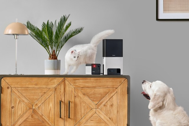 Petcube releases of Petcube Bites 2 and Petcube Play 2 smart cameras