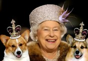 Queen-Elizabeth-II-181131