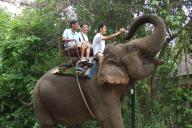 elephant_rider