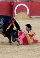 Bullfighter dies