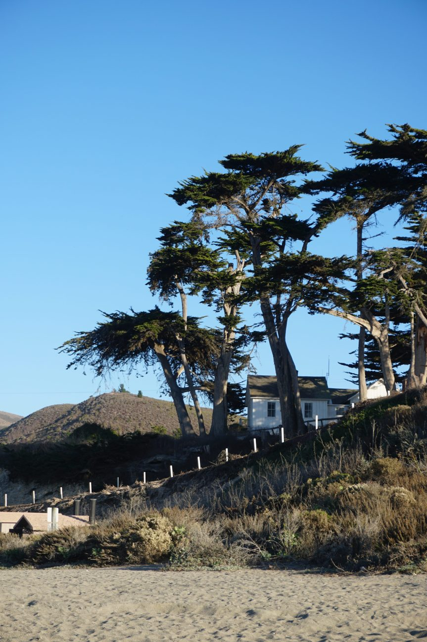 Travel: Montana De Oro State Park and Baywood-Los Osos, California