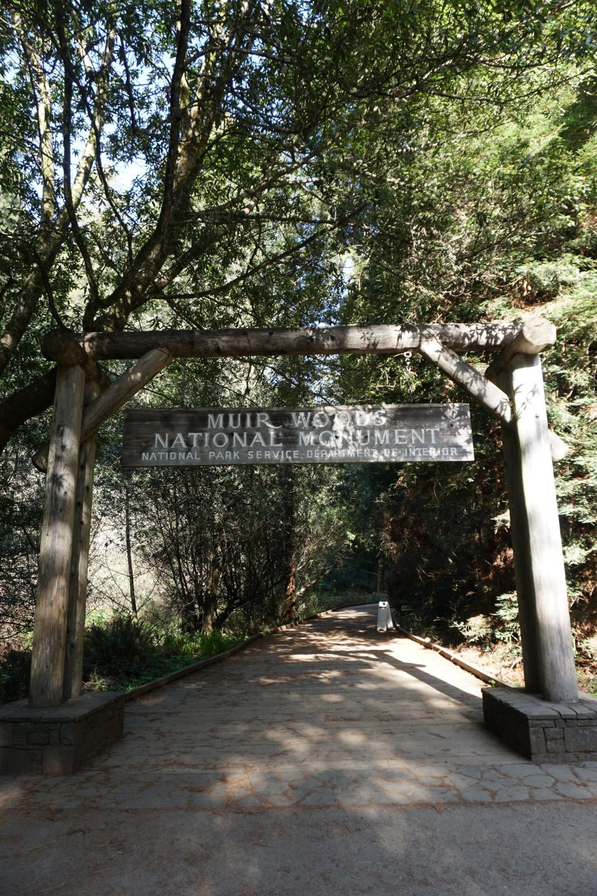 Travel: Day Hike from Muir Woods to Stinson Beach