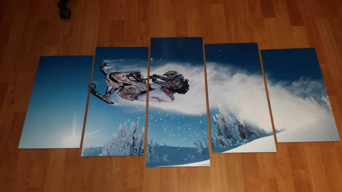 Snowmobile Wall Mural