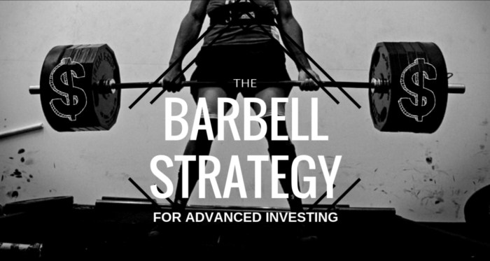 The Barbell Strategy for Advanced Investing