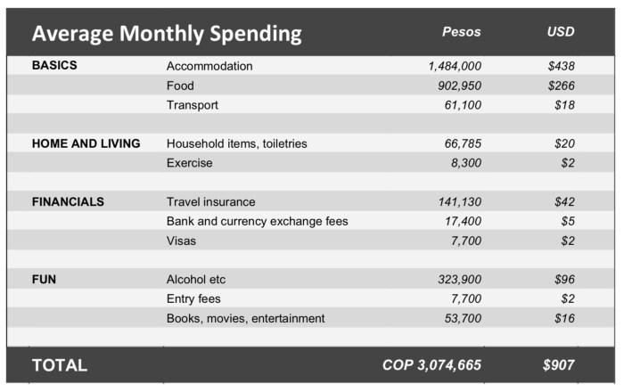 Monthly cost of living in US dollars colombia